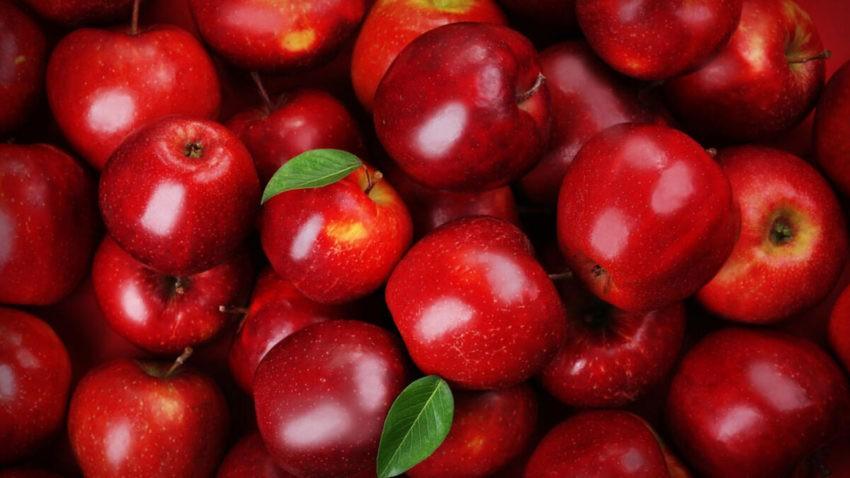 Karaman Tayland'a elma ihraç ediyor